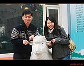 20100123~24_清境/合歡山-二日遊:nEO_IMG_IMG_6490.jpg