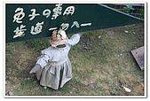 20100619_八里_兔子餐廳&海岸公園:nEO_IMG_IMG_0289.jpg