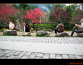20100123~24_清境/合歡山-二日遊:nEO_IMG_IMG_6598.jpg
