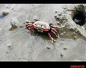20090725_高美濕地&伸港一日遊:nEO_IMG_IMG_4758.jpg
