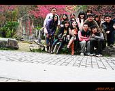 20100123~24_清境/合歡山-二日遊:nEO_IMG_IMG_6600.jpg