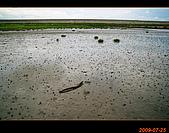 20090725_高美濕地&伸港一日遊:nEO_IMG_IMG_4727.jpg