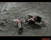 20090725_高美濕地&伸港一日遊:nEO_IMG_IMG_4739.jpg