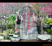 20100123~24_清境/合歡山-二日遊:nEO_IMG_P1010653.jpg