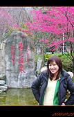 20100123~24_清境/合歡山-二日遊:nEO_IMG_P1010654.jpg