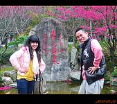 20100123~24_清境/合歡山-二日遊:nEO_IMG_P1010656.jpg