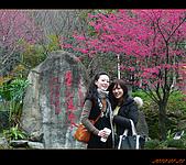 20100123~24_清境/合歡山-二日遊:nEO_IMG_P1010657.jpg
