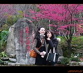 20100123~24_清境/合歡山-二日遊:nEO_IMG_P1010658.jpg