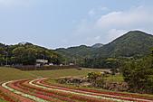 20110409_清景大湖:20110409-1140-3.jpg