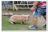 20100619_八里_兔子餐廳&海岸公園:nEO_IMG_IMG_0307.jpg