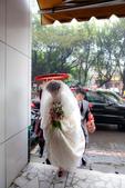 20130127_文正 & 筱娟 結婚紀錄:20130127-0952-182.jpg