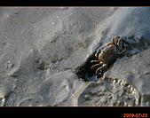 20090725_高美濕地&伸港一日遊:nEO_IMG_IMG_4775.jpg