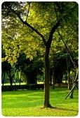 20110821_大安森林公園之什麼都有:Canon EOS 5D Mark II-20110821-0739-13.jpg