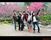 20100123~24_清境/合歡山-二日遊:nEO_IMG_IMG_6608.jpg