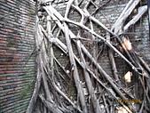 980207~980208台南古蹟之旅:照片 075.jpg