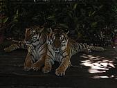泰國蜜月之旅:泰國 186.jpg