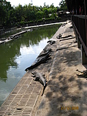 泰國蜜月之旅:泰國 144.jpg