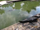 泰國蜜月之旅:泰國 145.jpg