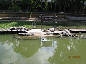泰國蜜月之旅:泰國 147.jpg