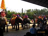 泰國蜜月之旅:泰國 151.jpg
