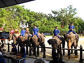 泰國蜜月之旅:泰國 152.jpg