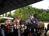 泰國蜜月之旅:泰國 154.jpg
