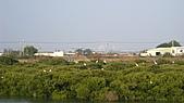 980207~980208台南古蹟之旅:照片 093.jpg