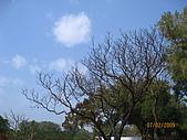 980207~980208台南古蹟之旅:照片 022.jpg