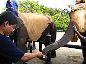 泰國蜜月之旅:泰國 156.jpg