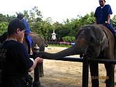 泰國蜜月之旅:泰國 157.jpg