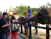 泰國蜜月之旅:泰國 158.jpg