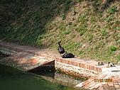980207~980208台南古蹟之旅:照片 005.jpg