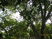 980207~980208台南古蹟之旅:照片 068.jpg