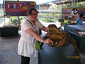 泰國蜜月之旅:泰國 167.jpg