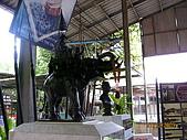 泰國蜜月之旅:泰國 168.jpg