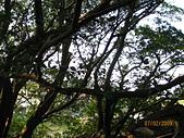 980207~980208台南古蹟之旅:照片 087.jpg