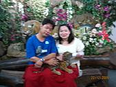 泰國蜜月之旅:泰國 265.jpg