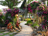 泰國蜜月之旅:泰國 497.jpg
