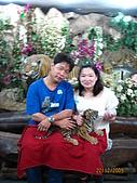 泰國蜜月之旅:泰國 266.jpg