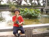 2008.04.23 中山大學一隅:CAM_2088.JPG
