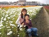 2008.12.13 橋頭鄉花田喜事:CAM_3095.JPG