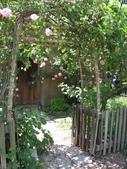 2009.5.10 Descanso Garden:1941510534.jpg