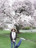 2009.4.12 Green Lake & University of Washingto:1284403196.jpg