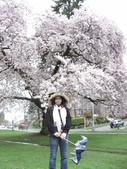 2009.4.12 Green Lake & University of Washingto:1284403197.jpg
