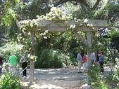 2009.5.10 Descanso Garden:1941545926.jpg