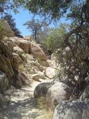 2009.06.20-21 Joshua Tree National Park:1261257552.jpg