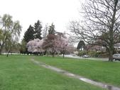 2009.4.12 Green Lake & University of Washingto:1284403187.jpg