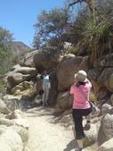 2009.06.20-21 Joshua Tree National Park:1261257554.jpg