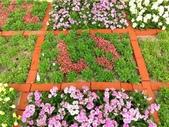 大阪花博紀念公園鶴見綠地:1081023006.jpg
