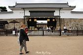 京都元離宮二條城:1081026005.JPG